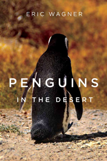 Penguins in the Desert