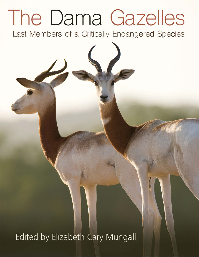 The Dama Gazelles: Last Members of a Critically Endangered Species