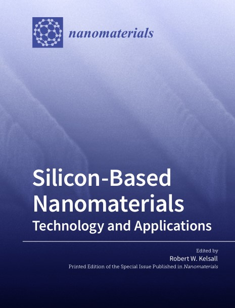 Silicon-Based Nanomaterials: Technology and Applications