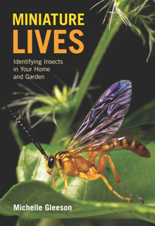 Miniature Lives : Identifying Insects in Your Home and Garden
