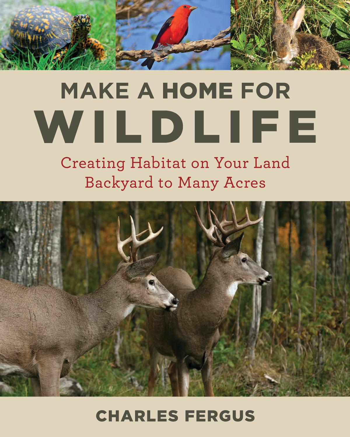 Make a Home for Wildlife: Creating Habitat on Your Land Backyard to Many Acres