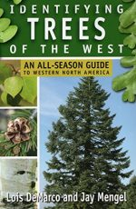 Identifying Trees of the West: An All-Season Guide to Western North America