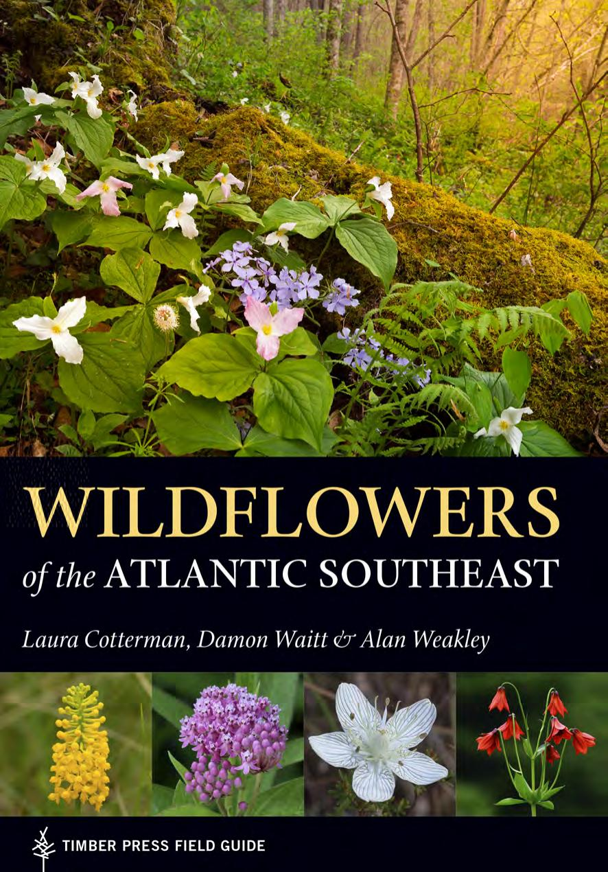Wildflowers of the Atlantic Southeast (Timber Press Field Guide)