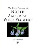 The encyclopedia of North American wild flowers