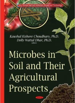 Microbes in Soil and Their Agricultural Prospects