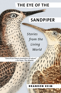 The Eye of the Sandpiper : Stories From the Living World