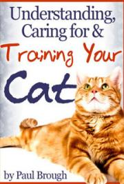Understanding, Caring for and Training Your Cat