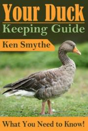 Your Duck Keeping Guide