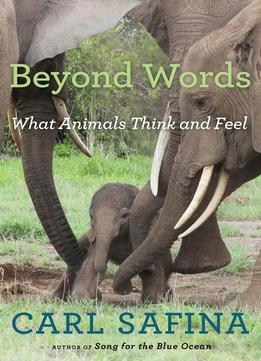 Download Beyond Words: What Animals Think & Feel