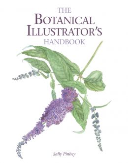 Download Botanical Illustrator's Handbook