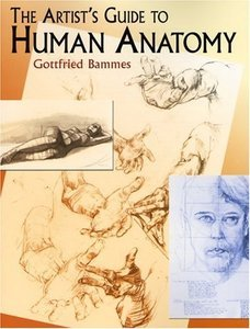 The-Artists-Guide-to-Human-Anatomy