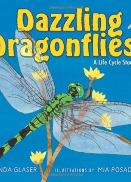 Download Dazzling Dragonflies: A Life Cycle Story