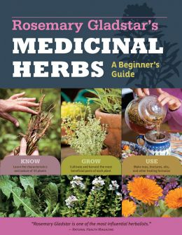 Rosemary-Gladstars-Medicinal-Herbs-A-Beginners-Guide-260x335