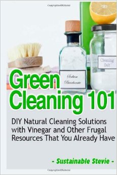 Download Green Cleaning 101