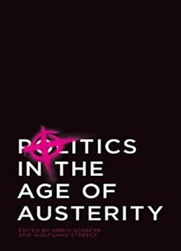 Download Politics In The Age Of Austerity