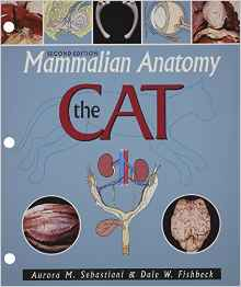 Download ebook Mammalian Anatomy: The Cat