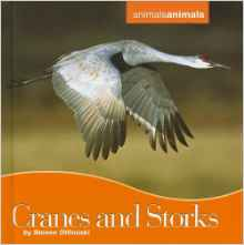 Download ebook Cranes & Storks
