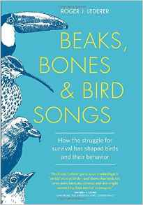 Download ebook Beaks, Bones, & Bird Songs