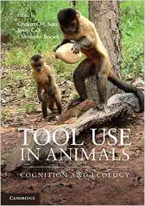 Download ebook Tool Use in Animals: Cognition & Ecology