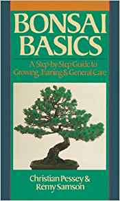 Download ebook Bonsai Basics: A Step-By-Step Guide To Growing, Training &General Care