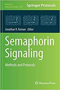 Download ebook Semaphorin Signaling: Methods & Protocols