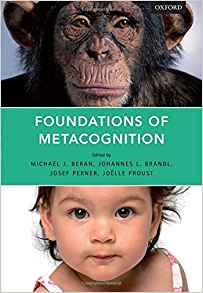 Download ebook Foundations of Metacognition