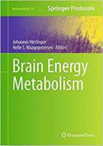 Brain Energy Metabolism (Neuromethods, Book 90)
