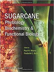 Download ebook Sugarcane: Physiology, Biochemistry & Functional Biology