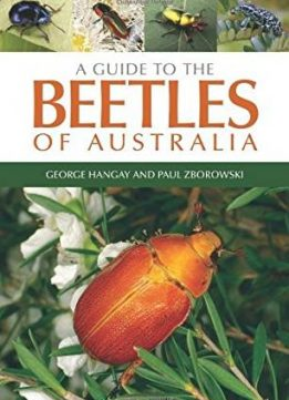Download ebook A Guide to the Beetles of Australia